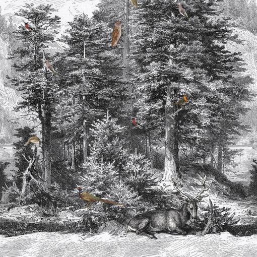 stofpanel wandkleed decoratiestof gordijnstof printstof 1.151030.1394.650